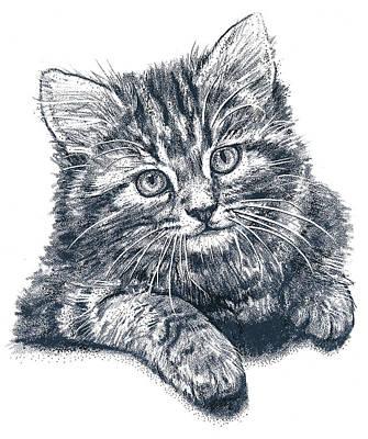 Mixed Media - Kitty by Murry Whiteman