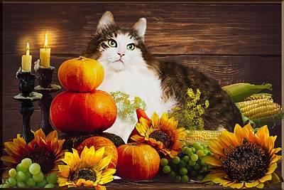 Wall Art - Digital Art - Kitty's Harvest by Cynthia Leaphart