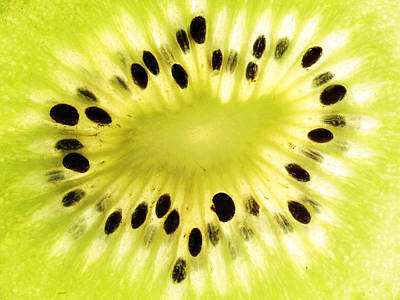 Kiwi Fruit Art Print by Paul Ge