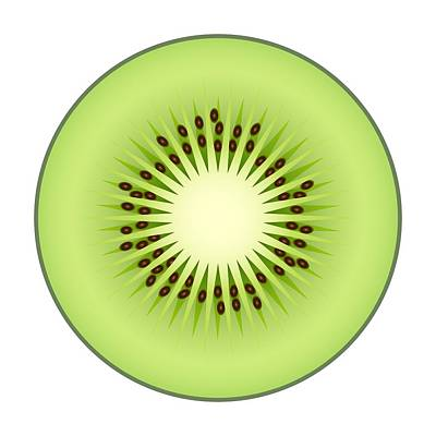 Kiwi Fruit Art Print by Miroslav Nemecek