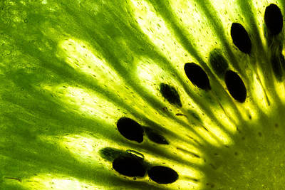 Fruit Photograph - Kiwi by Gert Lavsen