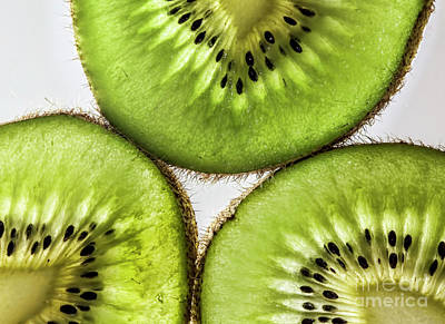 Photograph - Kiwi by Shirley Mangini