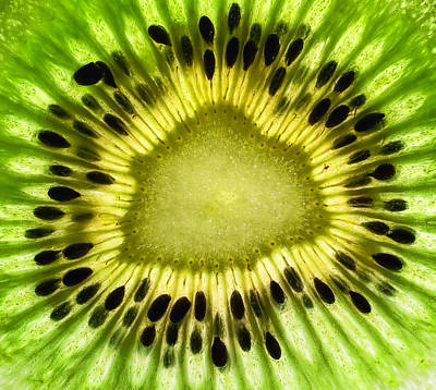 Fruits Photograph - Kiwi Up Close by June Marie Sobrito