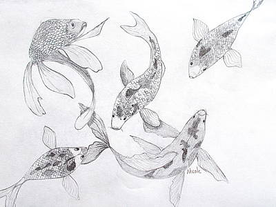 Animals Drawings - Koi Study by Nicole Curreri