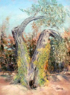 Pastel Landscape Pastel - Knarley Tree by John De Young