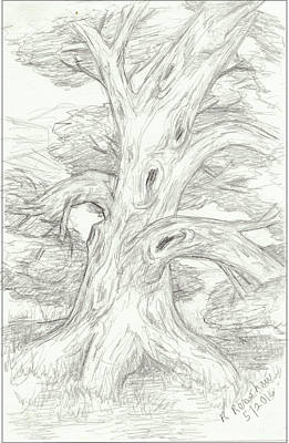 Drawing - Knarly Tree by Ruth Renshaw