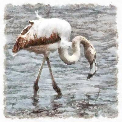 Painting - Knee Deep Flamingo Watercolor  by Tracey Harrington-Simpson