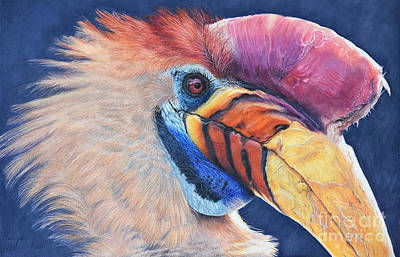 Hornbill Painting - Knobbed Hornbill by Wild Portrait Artist Monique Castellani-Kraan
