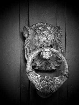 Photograph - Knock Knock by Jewels Blake Hamrick