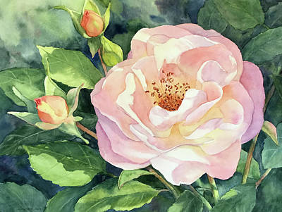 Painting - Knockout Rose And Buds by Vikki Bouffard