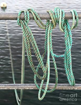 Photograph - Knot Of My Warf II by Stephen Mitchell