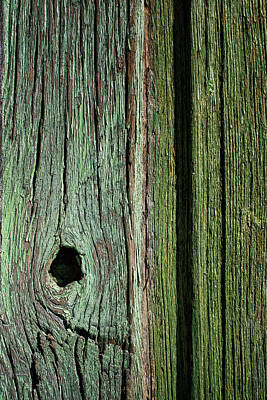 Photograph - Knothole - Green Gate by Nikolyn McDonald