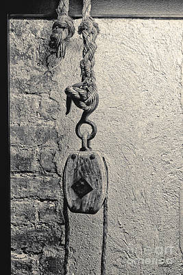 Photograph - Knots And More by Jutta Maria Pusl