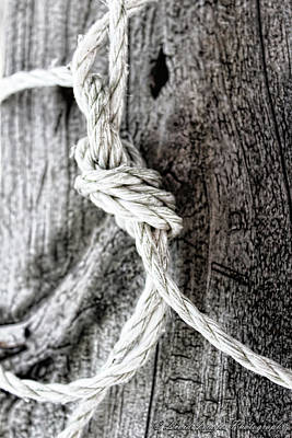 Photograph - Knotted Up by Kristie Bonnewell