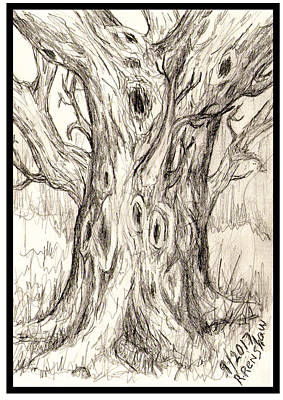 Drawing - Knotty Tree by Ruth Renshaw