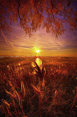 Photograph - Know That You Are Not Alone by Phil Koch