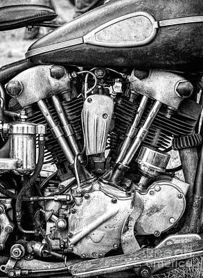 Photograph - Knucklehead by Tim Gainey