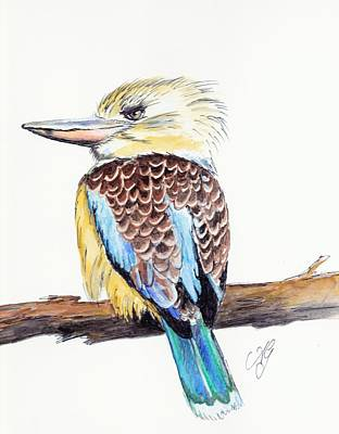 Painting - Kookaburra 5 by Anne Gardner