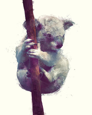 Polar Bear Mixed Media - Koala by Amy Hamilton