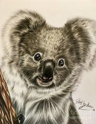 Drawing - Koala Bear by Art By Three Sarah Rebekah Rachel White