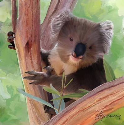 Koala Digital Art - Koala  Painting by Michael Greenaway