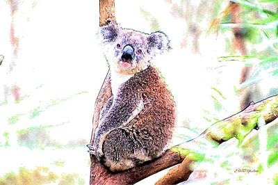Koala Bear Digital Art - Koala Stare by EricaMaxine Price