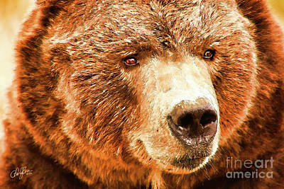 Kodiak Digital Art - Kodiak Bear by Cheryl Rose