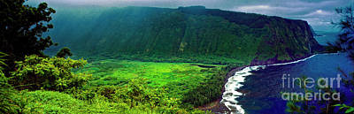 Photograph - Kohala Forest Preserve Waipio Valley Look Out Big Island Hawaii by Tom Jelen