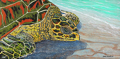 Painting - Kohilo by Debbie Chamberlin