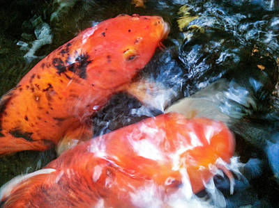 Photograph - Koi Abstraction 1 by Lon Casler Bixby