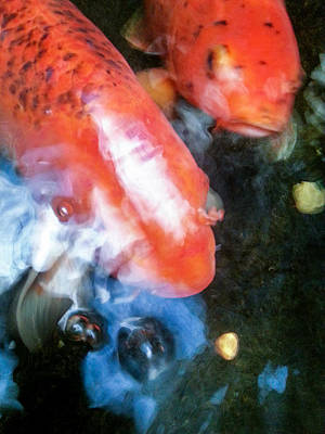Photograph - Koi Abstraction 2 by Lon Casler Bixby