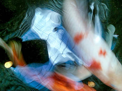 Photograph - Koi Abstraction 3 by Lon Casler Bixby