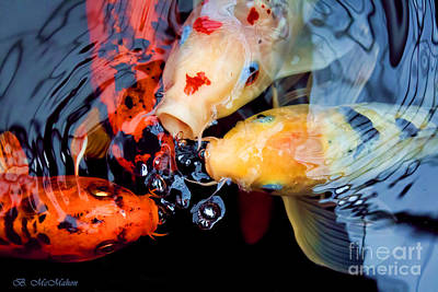 Photograph - Koi Bubble Machines by Barbara McMahon