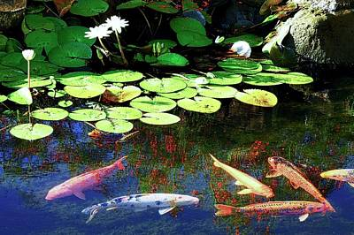 Photograph - Koi Fish And Water Lilies by Kirsten Giving