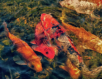 Photograph - Koi Fish Fresco One by Tony Grider