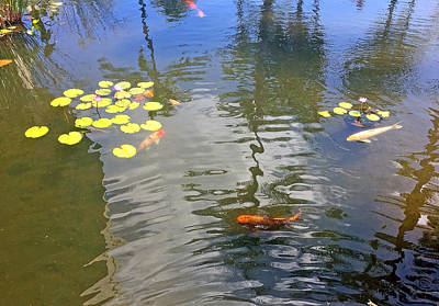 Photograph - Koi In Cardinal Positions by Robert Meyers-Lussier