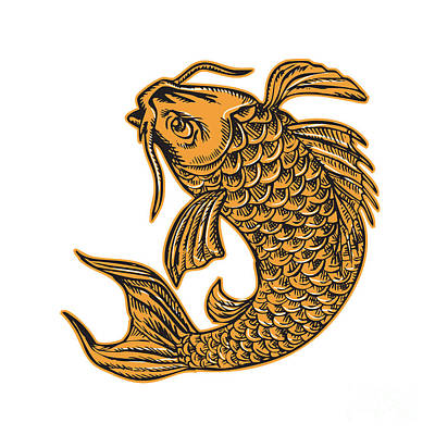 Koi Digital Art - Koi Nishikigoi Carp Fish Jumping Etching by Aloysius Patrimonio