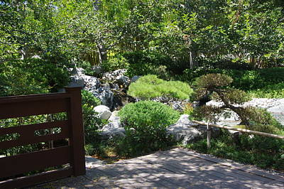 Photograph - Koi Pond 12 Japanese Friendship Garden by Phyllis Spoor