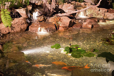 Photograph - Koi Pond And Waterfall by Kevin McCarthy