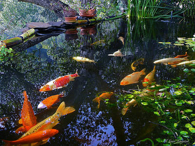 Photograph - Koi Pond Fairfax Ca by K L Kingston