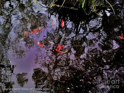 Koi Reflections Evening Art Print by Jamey Balester