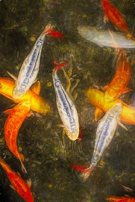 Photograph - Koi Up Close by Alice Gipson