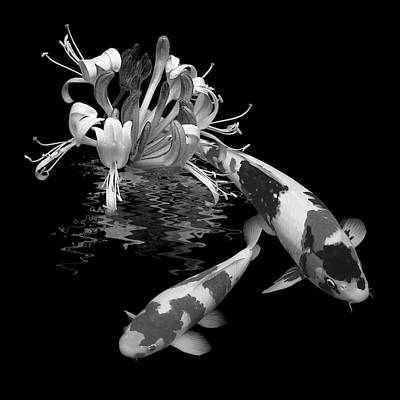 Photograph - Koi With Honeysuckle Reflections In Black And White by Gill Billington
