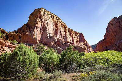 Photograph - Kolab Canyons Utah by Kathleen Scanlan