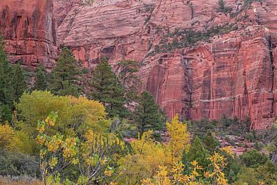 Photograph - Kolob Canyon Colors by Kunal Mehra