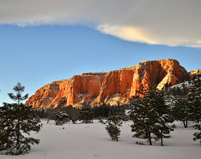 Vermeer Rights Managed Images - Kolob Canyon High Country Royalty-Free Image by Ray Mathis