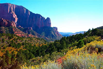 Photograph - Kolob Canyon by Patricia Haynes