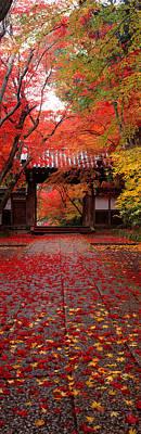 Kyoto Photograph - Komyoji Temple  Kyoto Japan by Panoramic Images