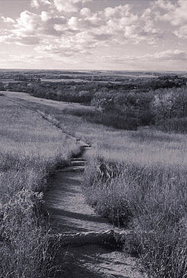 Photograph - Konza Treking by Thomas Bomstad