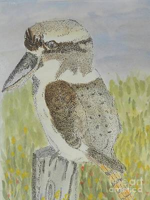 Painting - Kookaburra by Pamela Meredith